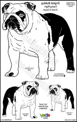 English Bulldog Decals Bundle. 5 Inch  Facing Right, 3 Count