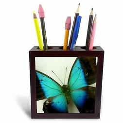 3dRose ph_13935_1 Florida Butterfly-Tile Pen Holder, 5-Inch
