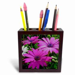 3dRose ph_17666_1 Flowers African Daisy-Tile Pen Holder, 5-I